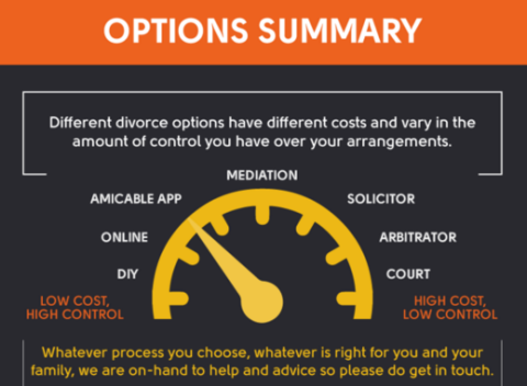 Infographic : The Divorce Process